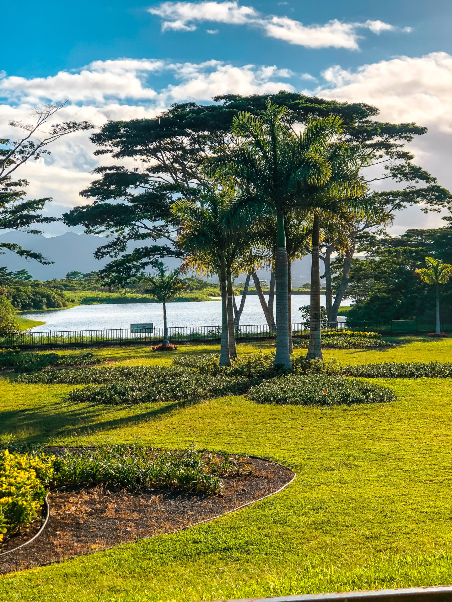 The Dole Plantation: Hawaii's Must Visit Pineapple ...